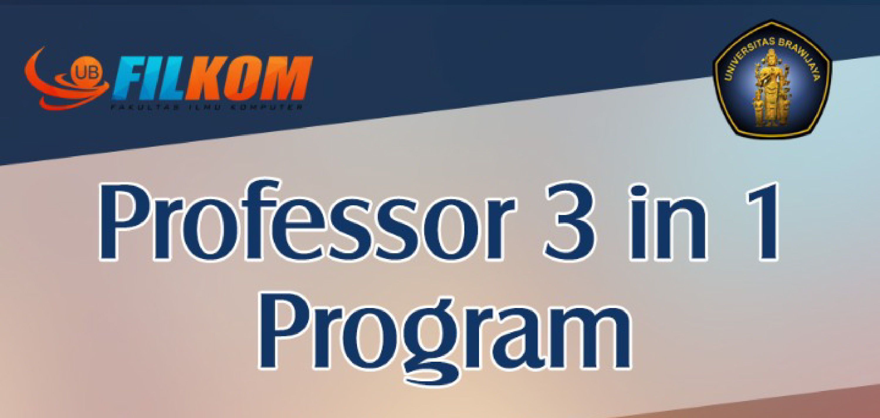 banner_prof_3in1-01